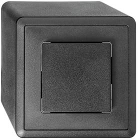 Edizio Due AP S6 Interrupteur à poussoir Feller 612219900000 Photo no. 1