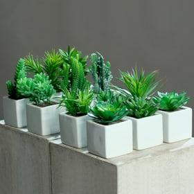 Künstliche Sukkulente Do it + Garden 657097700000 Bild Nr. 1
