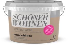 Vernice di tendenza opaca Macchiato 1 l Schöner Wohnen 660906800000 Colore Macchiato Contenuto 1.0 l N. figura 1