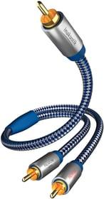 Premium Y-Subwoofer RCA Kabel (3m) Audio Kabel inakustik 785300143242 Bild Nr. 1