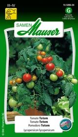 Tomate Totem Semences de legumes Samen Mauser 650157700000 Photo no. 1
