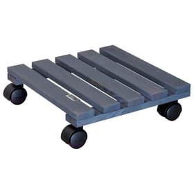 Multiples Support à roulettes pour plantes Wagner System 657031400000 Photo no. 1