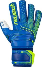 Fit Attrakt SG Finger Support Fussball-Torwarthandschuhe Reusch 461952808040 Grösse 8 Farbe blau Bild-Nr. 1