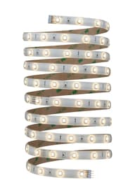 YourLED Stripe 3 m, bianco calso Light-Strip Paulmann 615017200000 N. figura 1