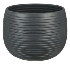 Céramique Pot Pot Scheurich 658611700016 Couleur Anthracite Taille ø: 16.0 cm x H: 12.4 cm Photo no. 1