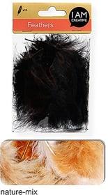 Flauschfedern I AM CREATIVE 665525300090 Farbe Natur Bild Nr. 1