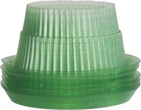 Anneaux anti-limaces, 12cm, 6 pièces Barrière anti-limaces Windhager 631129700000 Photo no. 1