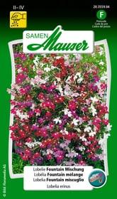 Lobelie Fountain Mischung Blumensamen Samen Mauser 650105001000 Inhalt 0.1 g (30 - 50  Pflanzen oder 2 m² ) Bild Nr. 1