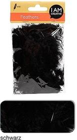 Dekofedern I AM CREATIVE 665525400010 Farbe Schwarz Bild Nr. 1