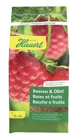 Beeren- und Obstdünger, 1 kg Feststoffdünger Hauert 658202200000 Bild Nr. 1