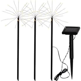 Firework Lampe solaire Star Trading 612639000000 Photo no. 1