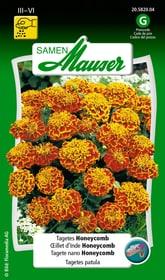 Tagetes Honeycomb Blumensamen Samen Mauser 650107506000 Inhalt 1 g (ca. 80 Pflanzen oder 5 m²) Bild Nr. 1