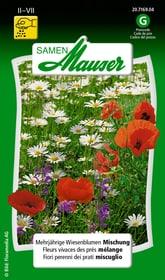 Mehrjährige Wiesenblumen Mischung Blumensamen Samen Mauser 650108101000 Inhalt 1 g (ca. 60 Pflanzen oder 4 - 5 m²) Bild Nr. 1