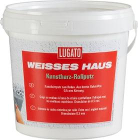 Weisses Haus Intonaco a rullo Lugato 676028600000 N. figura 1