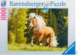 1000 Pferdeglück Puzzle Ravensburger 748979600000 Bild Nr. 1