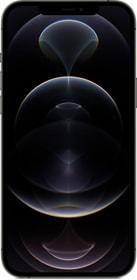 iPhone 12 Pro Max 128 GB Graphite Smartphone Apple 794665000000 Farbe Graphite Bild Nr. 1