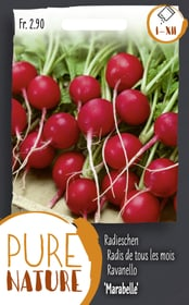 Radieschen 'Marabelle' früh 5g Gemüsesamen Do it + Garden 287115000000 Bild Nr. 1