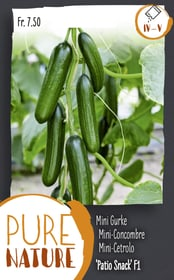Mini-Concombre 'Patio Snack' F1 10 Korn Semences de legumes Do it + Garden 287116500000 Photo no. 1
