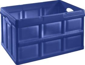 Klappbox, 46L Klappbox Tontarelli 603368000000 Bild Nr. 1