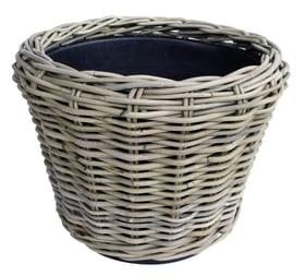 Dry Pot, en rotin Corbeille à plantes Dry Pot 659650000000 Couleur Gris Taille ø: 43.0 cm x H: 33.0 cm Photo no. 1