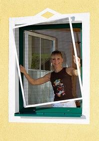 Insektenschutz-Fenster Windhager 63114410000005 Bild Nr. 1