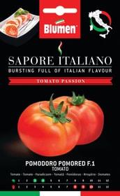 Tomate Pomored F1 Sementi di verdura Blumen 650161600000 N. figura 1