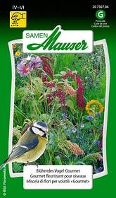 Blühendes Vogel-Gourmet Blumensamen Samen Mauser 650118402000 Inhalt 5 g (ca. 3-4 m² ) Bild Nr. 1