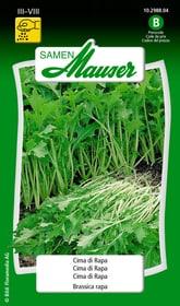 Cima di rapa Sementi di verdura Samen Mauser 650109501000 Contenuto 5 g (ca. 10 m²) N. figura 1