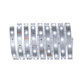 MaxLED 250 LED-Stripe LED-Streifen Paulmann 615153000000 Bild Nr. 1