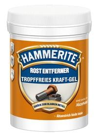 Rost-Entferner Kraft-Gel 200 ml Hammerite 660803800000 Bild Nr. 1