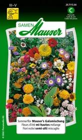 Sommerflor Mauser's Galamischung Blumensamen Samen Mauser 650107201000 Inhalt 2.5 g (ca. 150 Pflanzen oder 4 m²) Bild Nr. 1