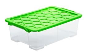 Evo Safe Keeping 30 l con coperchio Contenitore Rotho 603728200000 Colore Transparente Taglio L: 590.0 mm x L: 395.0 mm x A: 185.0 mm N. figura 1