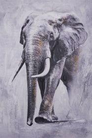 ELEPHANT Tableau Mix Media 433033100000 Photo no. 1