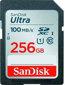 Ultra 100MB/s SDXC 256GB SanDisk 785300152318 Photo no. 1