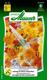 Joie du gourmet Semences de legumes Samen Mauser 650157400000 Photo no. 1