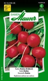 Radies Rodos (Frührot) Gemüsesamen Samen Mauser 650113605000 Inhalt 5 g (ca. 300 - 400 Pflanzen oder 3 m²) Bild Nr. 1