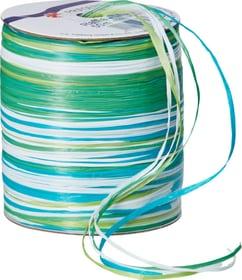 MULTI RAFFIA Ruban cadeau 440779900000 Couleur Turquoise Photo no. 1