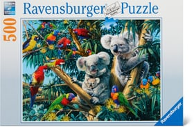 Koalas dans l'arbre RVB Puzzle 500 Ravensburger 748974400000 Photo no. 1
