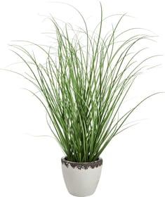 FLORET Plante artificielle 440757300000 Photo no. 1