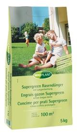 Engrais Supergreen, 5 kg Engrais pour gazon Mioplant 658246000000 Photo no. 1