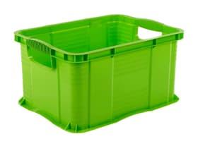Systembox A4 Agilo Aufbewahrungsbox Rotho 604149600000 Bild Nr. 1