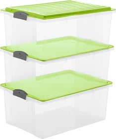 Compact  38 l mit Deckel, A3, 3er-Set Aufbewahrungsbox Rotho 603715700000 Bild Nr. 1