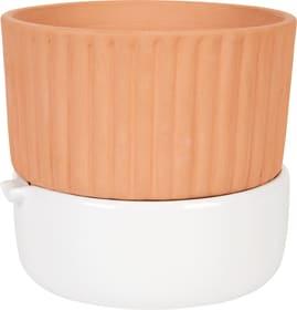 Pot avec irrigation Do it + Garden 657199400014 Taille ø: 16.5 cm x H: 14.5 cm Photo no. 1