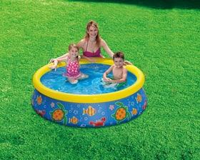 Kinder Quick Set Pool