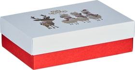 LALA Geschenkbox 443081600000 Bild Nr. 1