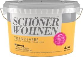 Trendfarbe Matt Honey 2.5 l Wandfarbe Schöner Wohnen 660907300000 Inhalt 2.5 l Bild Nr. 1