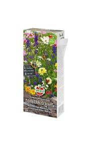 Blumenmischung  Heimatschatz Blumensamen Sperli 650199300000 Bild Nr. 1