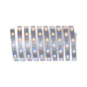 MaxLED 250 Basisset 3 m, Tuneable White Light-Strip Paulmann 615139100000 Bild Nr. 1