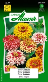 Zinnie Carrousel Blumensamen Samen Mauser 650108403000 Inhalt 1 g (ca. 50 Pflanzen oder 3 - 4 m² ) Bild Nr. 1