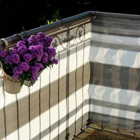 Balkonbespannung 500 x 90 cm Videx 631334600000 Farbe Grau-Anthrazit Grösse L: 500.0 cm x H: 90.0 cm Bild Nr. 1